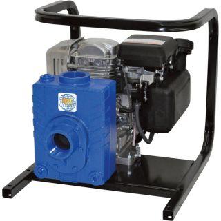 IPT Cast Iron Ag/Water Pump   127cc Engine, 2 Inch Ports, Model 2AG4ACV