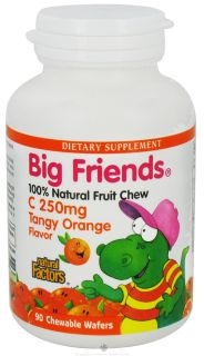 Natural Factors   Big Friends Chewable Vitamin C Tangy Orange Flavor 250 mg.   90 Chewable Wafers