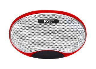 Portable  Speaker Player With Lithium Rechargeable Battery, LED Display, /Micro SD/USB/Laptop, FM Radio, Aux Input (RED COLOR) Computers & Accessories