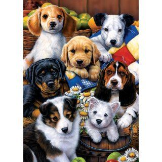 Tree Free Greetings Puppy Friends Birthday Cards, 2 Card Set, Multicolored (14193) : Cardstock Papers : Office Products