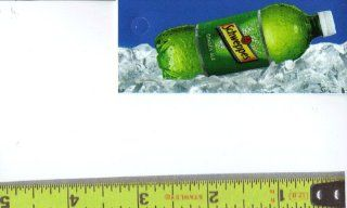Magnum, Small Rectangle Size Schweppes Ginger Ale Bottle on Ice Soda Vending Machine Flavor Strip, Label Card, Not a Sticker