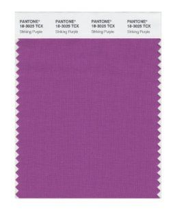 PANTONE SMART 18 3025X Color Swatch Card, Striking Purple   House Paint