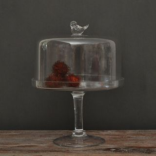 glass pedestal cake stand with bird dome by primrose & plum