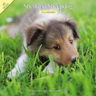 Magnet & Steel Shetland Sheepdog Traditional Wall Calendar  Pet Memorial Products