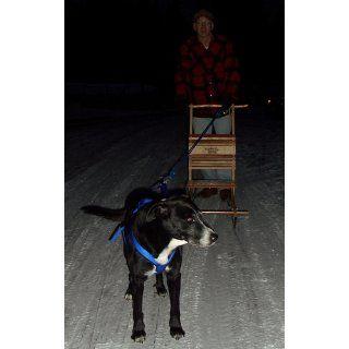 Mountain Boy Sledworks Colorado Kicksled  Snow Sleds  Sports & Outdoors
