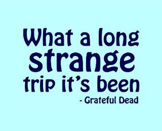 What A Long Strange Trip It's Been   Grateful Dead Quote X L Removable Vinyl Wall Art Decal Home Decor Sticker