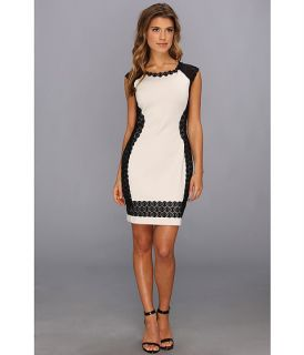 Bailey 44 Eva Marie Dress Black Beige