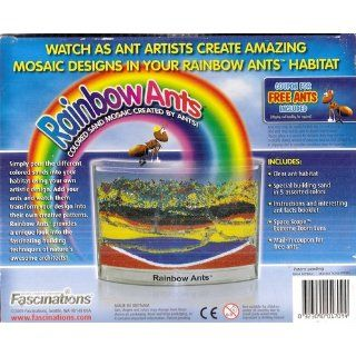Ant Habitat   Rainbow Ant Farm with Colored Sands and Live Ant Coupon Included: Toys & Games