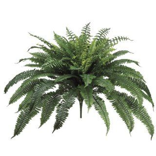 Shop Allstate Floral New Boston Fern Bush, 35 Inch at the  Home D�cor Store. Find the latest styles with the lowest prices from Allstate Floral