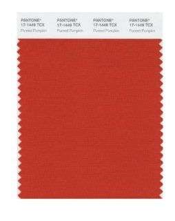 Pantone 17 1449 TCX Smart Color Swatch Card, Pureed Pumpkin   House Paint