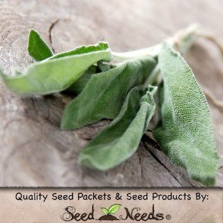 "100 Seeds, Sage Herb ""Broad Leaved"" (Salvia officinalis) Seeds by Seed Needs) : Herb Plants : Patio, Lawn & Garden"