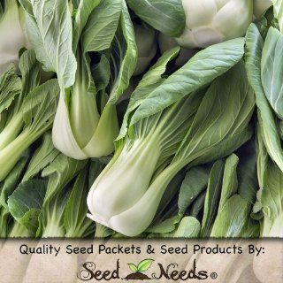 "150 Seeds, Cabbage ""Pak Choi White Stem"" (Brassica oleracea) Seeds By Seed Needs : Vegetable Plants : Patio, Lawn & Garden"