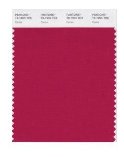 PANTONE SMART 19 1955X Color Swatch Card, Cerise: Home Improvement