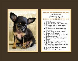 Chihuahua Property Laws Wall Decor Pet Dog Saying Gift   Decorative Plaques