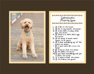 Labradoodle Property Laws Wall Decor Humorous Pet Dog Saying Gift   Decorative Plaques