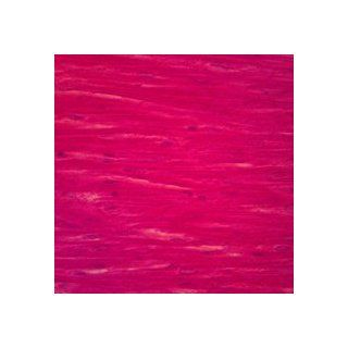 Mammal Cardiac Muscle, sec. 7 µm H&E Microscope Slide: Industrial & Scientific