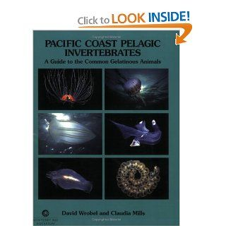 Pacific Coast Pelagic Invertebrates: A Guide to the Common Gelatinous Animals (9780930118235): David Wrobel, Claudia Mills: Books