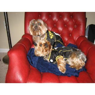 Pittsburgh Steelers Dog Mesh Jersey