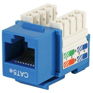 GRAINGER APPROVED Keystone Jack, Blue, Plastic, Series: Standard, Cable Type: Category 5e   Voice and Data Jacks   13U621|5371