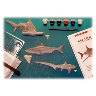 Skullduggery Eyewitness Shark Casting Kit   Toys & Games   Learning