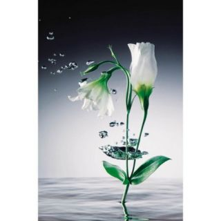 Brewster Home Fashions Ideal Decor Crystal Flowers Wall Mural