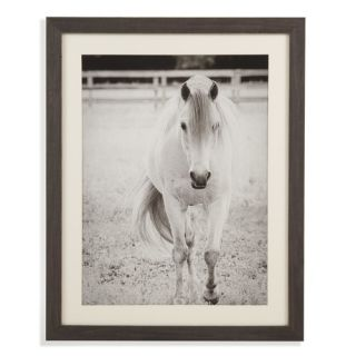 Belgian Luxe Gentle Approach Framed Photographic Print by Bassett