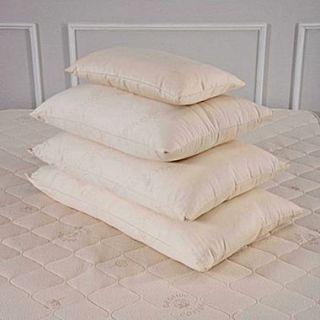 Bio Sleep Concept Organic Wool Medium Pillow; Queen