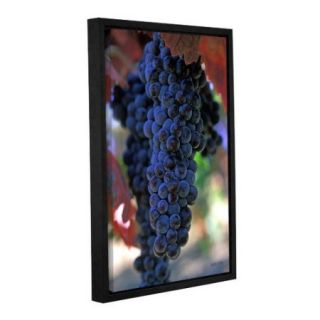 ArtWall On The Vine by Kathy Yates Floater Framed Photographic Print on Gallery Wrapped Canvas