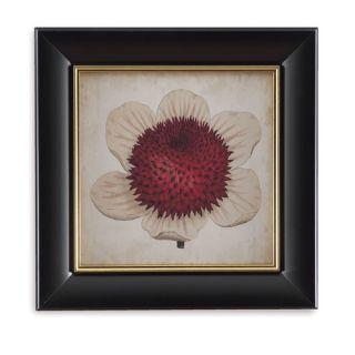 Bassett Mirror Pop Floral IV Framed Painting Print