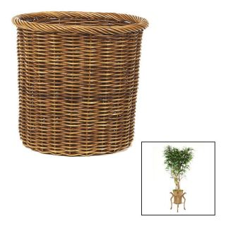 Distinctive Designs T 146 7 A18 7 Ruscus Smilax Tree in X Large Stained Tree Basket with Rolled Top Rim