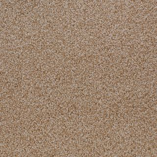 STAINMASTER Active Family Oak Grove Brown/Tan Cut and Loop Indoor Carpet
