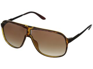 Carrera New Safari/S Havana Brown/Brown Gradient