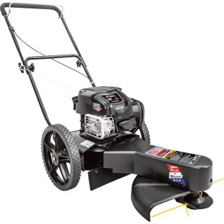 Swisher Walk-Behind High Wheel String Trimmer — 163cc Briggs & Stratton EXI Engine, 22in. Cutting Width, Model# ST67522BS